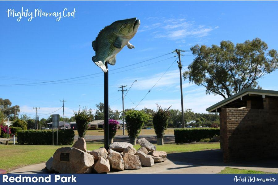 Mighty Murray Cod
